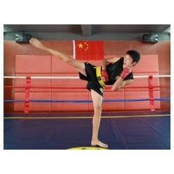 青岛武术培训哪家知名—散打培训怎么样-就找李沧弘扬武术