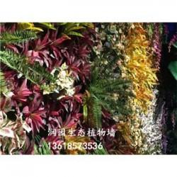 安顺仿真园林植物壁画清镇植物墙壁绿化工程